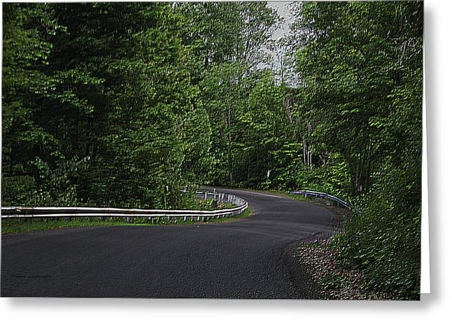 Roadway Fingers Lakes New York Area Pa 01 Greeting Card by Thomas Woolworth