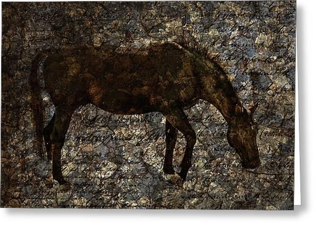 Roan Stallion Greeting Card