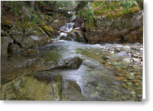 Roaring Brook Greeting Card