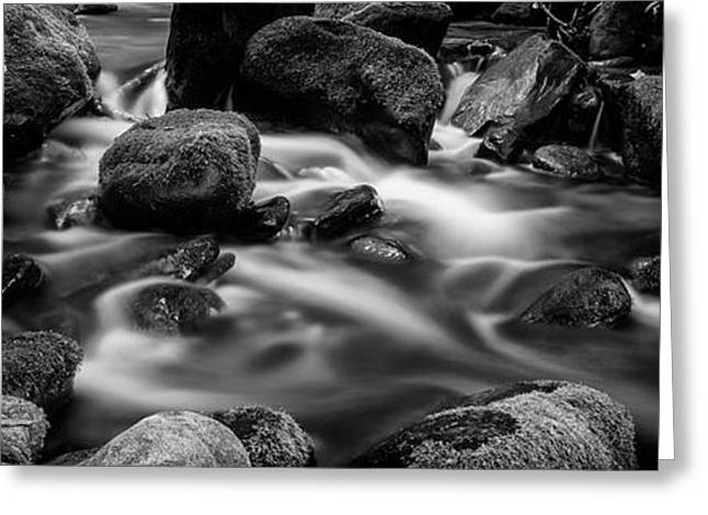 Roaring Fork Cascade - Bw Greeting Card by Stephen Stookey