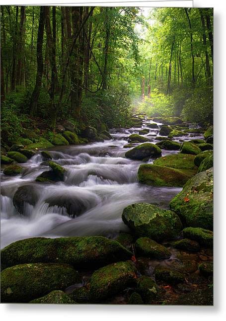 Great Smoky Mountains Roaring Fork Gatlinburg Tennessee Greeting Card