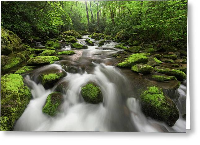 Roaring Fork Great Smoky Mountains National Park Tennessee Greeting Card by Mark VanDyke