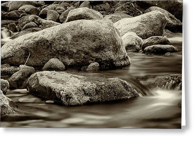Roaring Fork Mossy Rocks - Strong Sepia Greeting Card