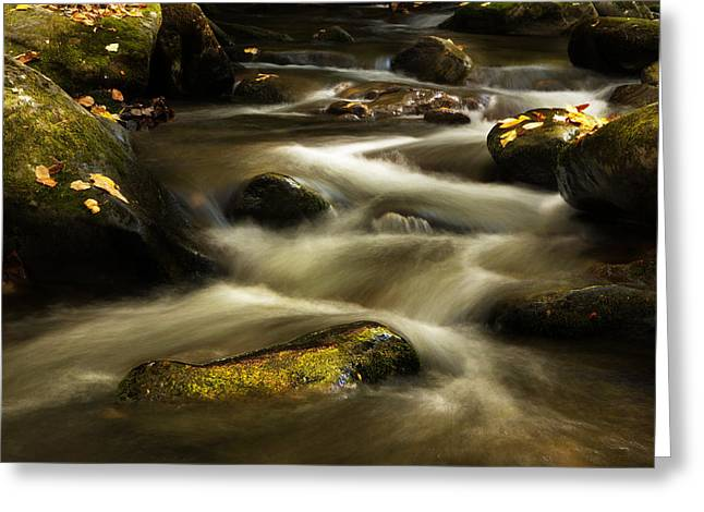 Autumn At Roaring Fork River Greeting Card by Carol Mellema