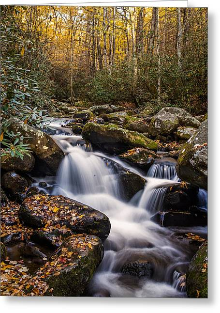 Tennessee River Greeting Cards - Roaring Fork Waterfall at Autumn Greeting Card by Andrew Soundarajan