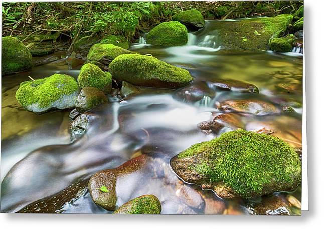 Roaring Fork Waters Greeting Card by Stephen Stookey