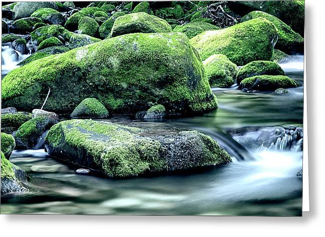 Roaring Forks Mossy Rocks - Muted Green Greeting Card by Stephen Stookey