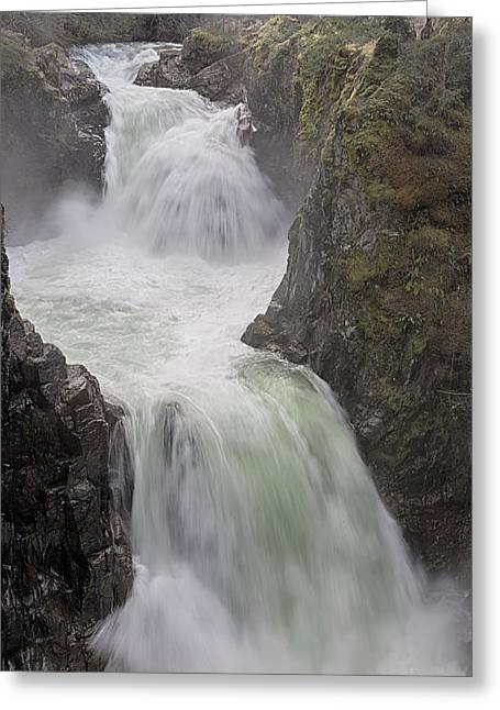 Roaring River Greeting Card by Randy Hall