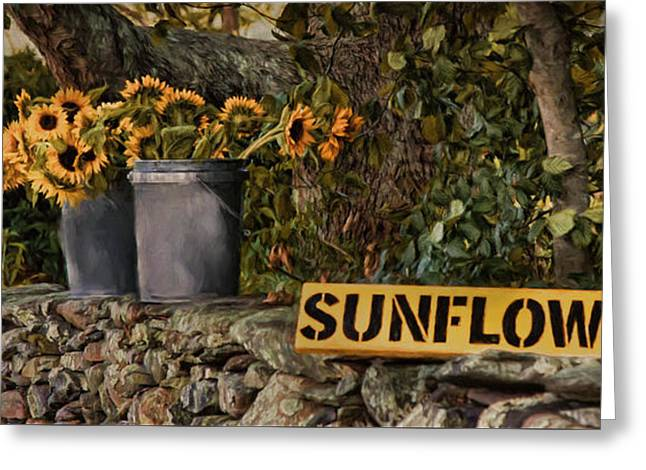 Greeting Card featuring the photograph Roadside Sunshine by Robin-Lee Vieira