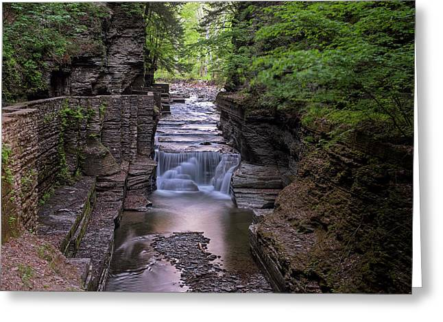 Robert H. Treman State Park Canal 2 Ithaca Ny Greeting Card