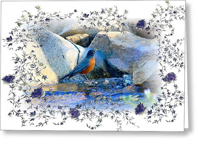 Greeting Card featuring the photograph Robin by Athala Carole Bruckner