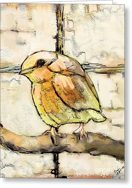 Robin Collage Greeting Card