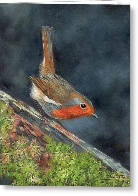 Robin Greeting Card by David Stribbling