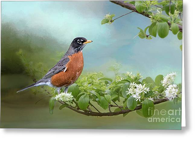 Greeting Card featuring the photograph Robin In Chinese Fringe Tree by Bonnie Barry