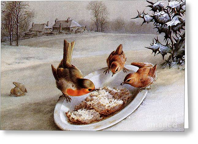 Robins And Wrens  Winter Breakfast Greeting Card