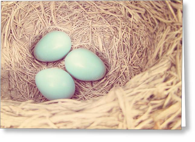 Pale Blue Greeting Cards - Robins Eggs Greeting Card by Amy Tyler