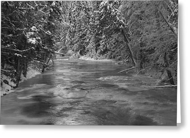 Robson River Black And White Greeting Card by Adam Jewell