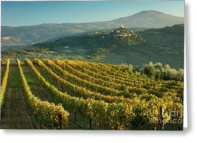 Rocca D'orcia Greeting Card