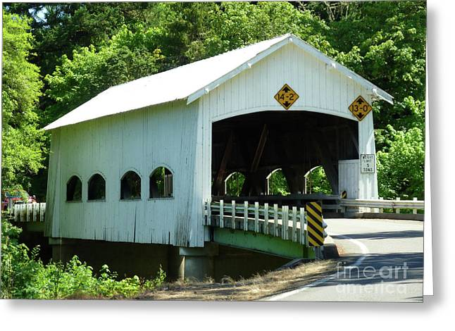 Rochester Bridge Greeting Card by Methune Hively