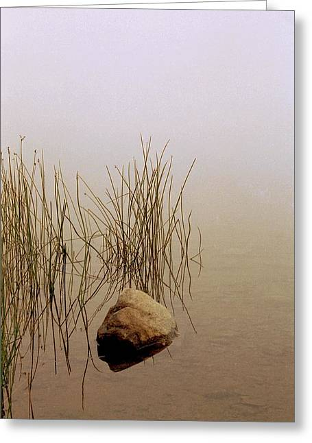 Rock And Reeds On Foggy Morning Greeting Card