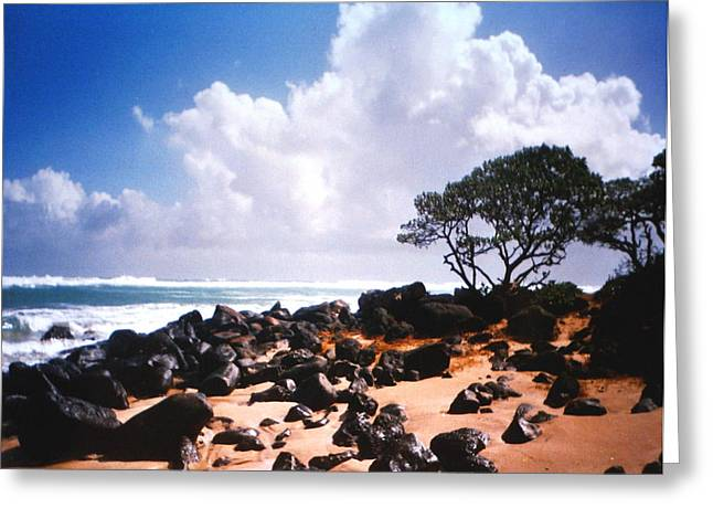 Rock And Sand Greeting Card by Diane Merkle
