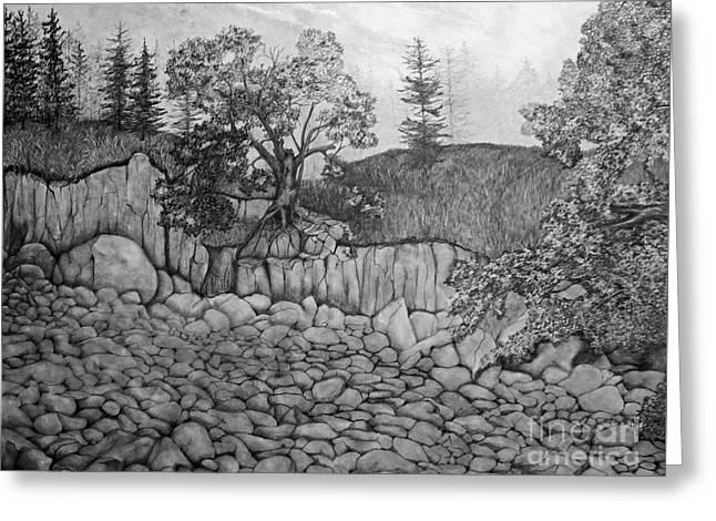 Greeting Card featuring the drawing Rock Beach by John Stuart Webbstock