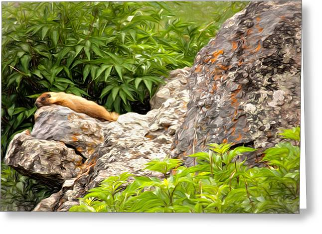 Greeting Card featuring the photograph Rock Chuck by Lana Trussell