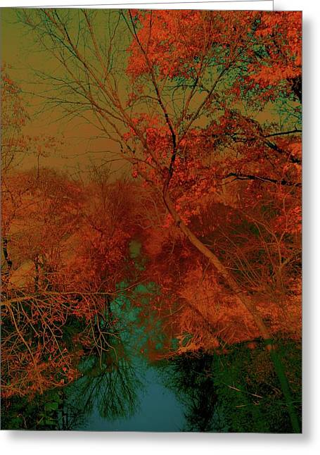 Greeting Card featuring the photograph Rock Creek At M by EDi by Darlene