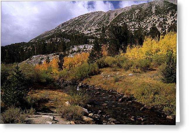 Rock Creek Fall Color Greeting Card by Don Kreuter