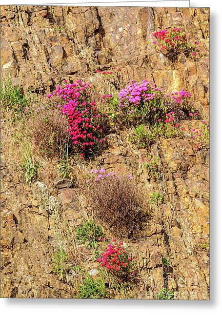 Rock Cutting 1 Greeting Card by Werner Padarin