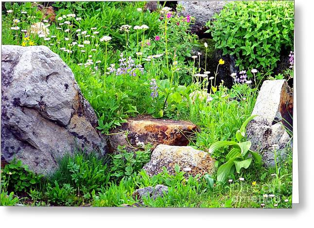 Greeting Card featuring the photograph Rock Garden by Charles Robinson