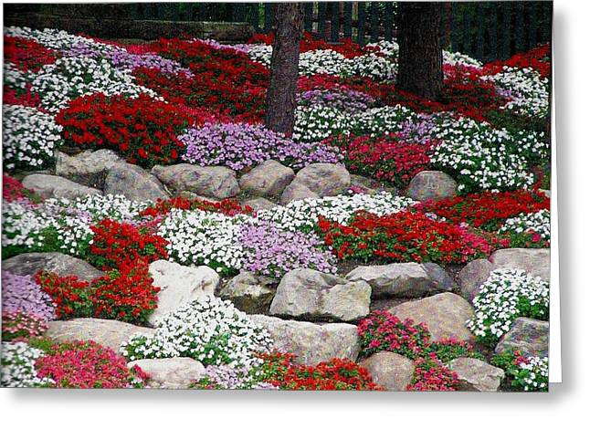 Greeting Card featuring the photograph Rock Garden by Jeanette Oberholtzer