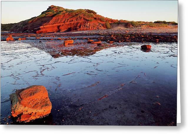 Rock Shelf At Long Reef 1 Greeting Card