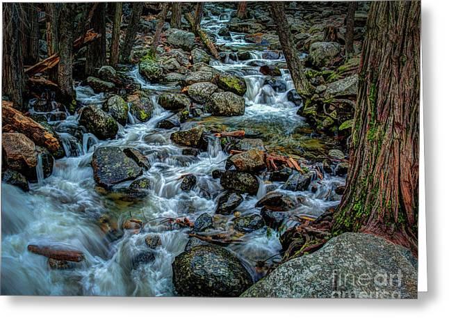 Rock Strewn Bridalveil Creek In Yosemite Greeting Card by Terry Garvin