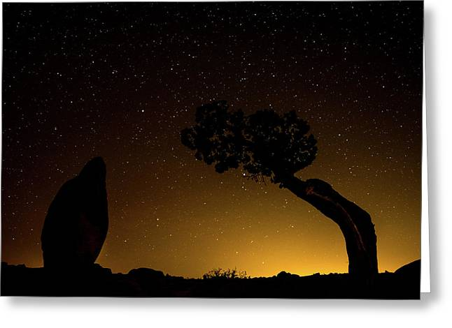 Greeting Card featuring the photograph Rock, Tree, Friends by T Brian Jones