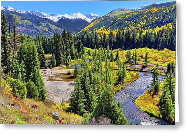 Rockies And Aspens - Colorful Colorado - Telluride Greeting Card by Jason Politte