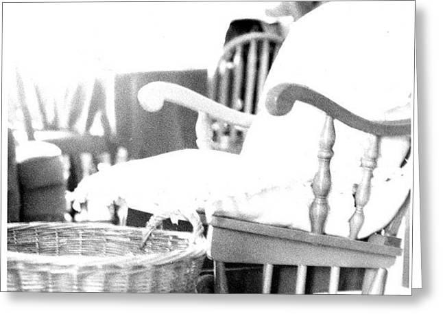 Rocking Chair Greeting Card by Annelisa Fischer