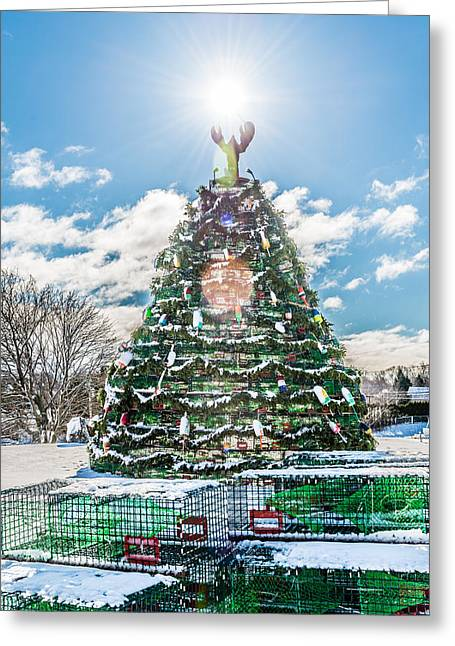 Rockland Trap Tree Greeting Card