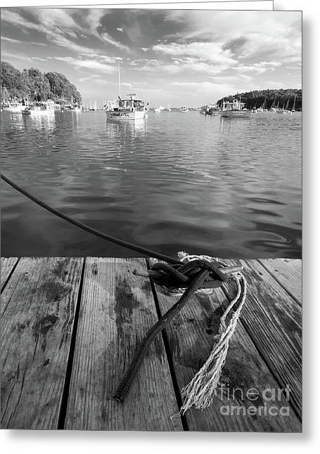 Rockport Harbor, Maine #80458-bw Greeting Card