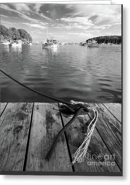 Rockport Harbor, Maine #80458-bw Greeting Card