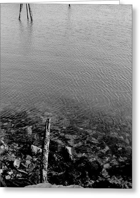 Maine Shore Greeting Cards - Rockport Shore Greeting Card by Timothy Bischoff
