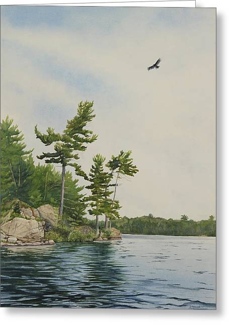 Rocks And Pines No.1 Greeting Card by Debbie Homewood