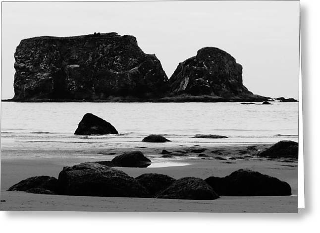 Rocks And Sea Stacks In Washington Greeting Card by Dan Sproul