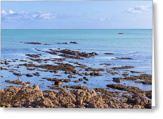 Greeting Card featuring the photograph Rocks And Seaweed And Seagulls In The Irish Sea At Howth by Semmick Photo