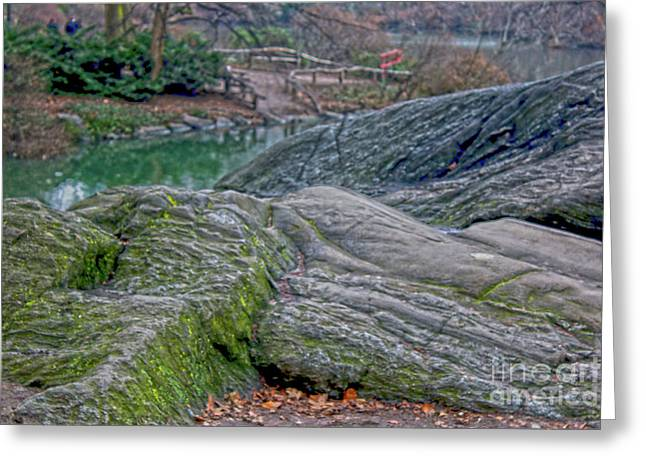 Greeting Card featuring the photograph Rocks At Central Park by Sandy Moulder