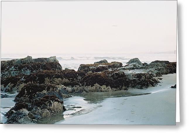 Rocks At Low Tide Greeting Card by Bruce Wayne