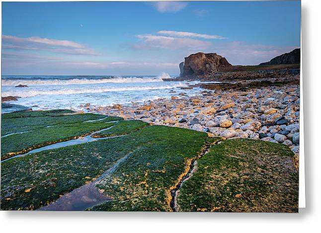 Rocks At Trow Point Greeting Card by David Head