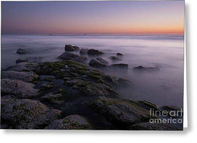 Rocks On The Beach At Sunset Greeting Card