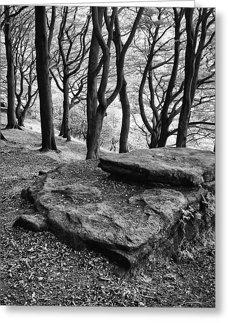 Rocks Over The Woods  Greeting Card
