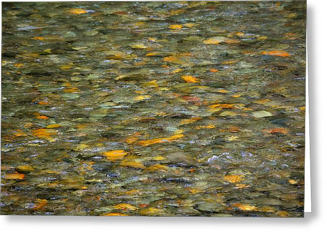 Rocks Under Water Greeting Card